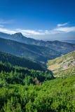 从在小丘污蔑之间的山峰Giewont Tatra Mounta 免版税库存图片
