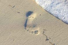 从在沙子的一赤脚追踪 库存照片