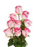 从在空白backgroun查出的玫瑰的五颜六色的花花束 免版税图库摄影
