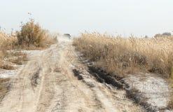 从在路的SUV拂去灰尘有藤茎的 库存图片