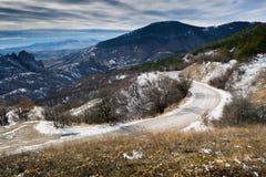 从多山高度14的冬天森林 图库摄影