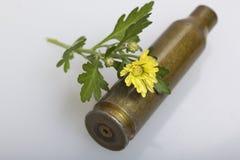 从大口径机枪的射击袖子和一朵黄色菊花开花 和平的创立 库存照片