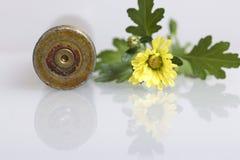 从大口径机枪的射击袖子和一朵黄色菊花开花 和平的创立 免版税库存照片