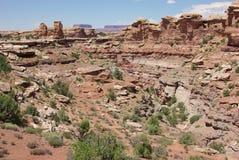 从大春天峡谷的视图俯视 免版税库存照片