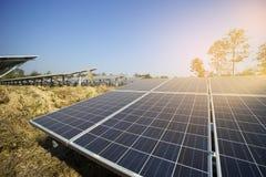 从太阳光的太阳农厂绿色能量 免版税库存照片