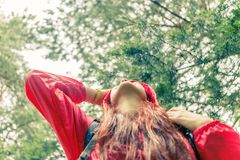 从妇女底部的图象森林的 免版税库存照片