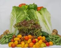 从家庭农夫的有机素食者篮子 库存图片