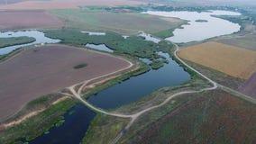 从寄生虫和植被看的湖 影视素材
