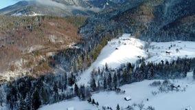 从寄生虫的喀尔巴阡山脉4K空中录影镜头在罗马尼亚 股票录像