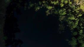 从寄生虫的空中英尺长度在有树的反射的小森林湖在水中 股票视频