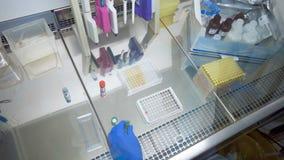 从小瓶的液体物质得到涌入调色板 影视素材