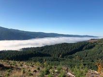 从山上面的谷雾 库存图片