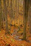 从山的秋天秀丽在保加利亚 免版税库存图片