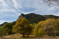 从山的秋天秀丽 库存照片