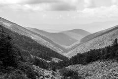从山Livadiyskaya - Pidan的顶端黑白看法在锡霍特山脉,俄罗斯 免版税图库摄影