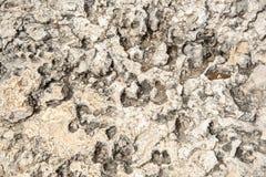 从岩石表面的白色抽象脏的背景 免版税库存照片