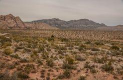 从峡谷地板的一个看法 库存图片