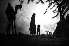 从市的骆驼供营商普斯赫卡尔,普斯赫卡尔Mela 免版税库存照片