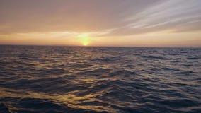 从帆船的风景看法在金黄日落在天空和海挥动 影视素材