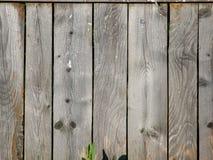 从平行的委员会的老灰色木篱芭 免版税库存图片
