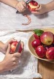 从庭院的削皮苹果 免版税图库摄影
