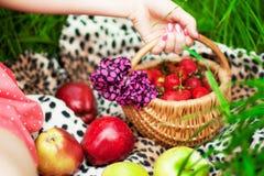 从庭院的夏天明亮的水多的果子 库存图片