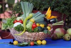 从庭院的新鲜蔬菜果子 免版税库存照片