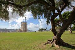 从庭院观看的贝伦塔用在前景,里斯本,葡萄牙的一棵树 免版税库存照片