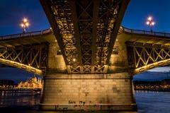 从延命菊桥梁下面,在布达佩斯,匈牙利,夜全景 免版税图库摄影