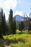 从彩虹水池的三位一体山 库存图片
