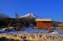 从忍野村庄日本的富士山多雪和蓝天 免版税库存照片