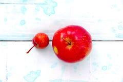 从我的果树园的新鲜的红色有机苹果 小一个和大一个 库存图片