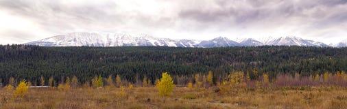 从拖曳采取的加拿大岩石Moutains的全景 免版税图库摄影