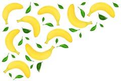 从整个香蕉的无缝的样式与在与拷贝空间的白色背景隔绝的叶子您的文本的 顶视图 库存图片