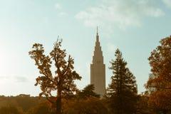 从新宿看见的高摩天大楼Gyoen全国Gardenm在秋天期间 免版税库存图片