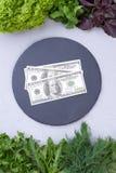 从新草本和美元,顶视图的框架 免版税图库摄影