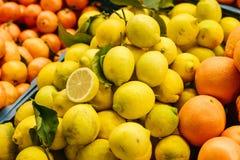 从新鲜的柠檬,蜜桔的柑橘混合,橙色在农厂市场上 产品富有在维生素上 免版税图库摄影