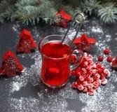 从新鲜的红色荚莲属的植物的茶在一块透明玻璃 免版税库存图片