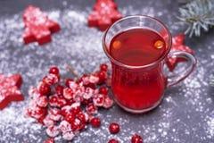 从新鲜的红色荚莲属的植物的茶在黑ba的一块透明玻璃 免版税库存图片
