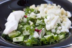 从新鲜蔬菜和鸡蛋的沙拉在牌照 免版税库存图片