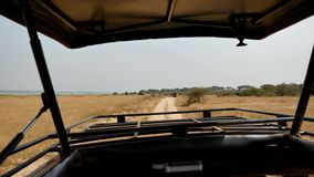 从旅行在非洲大草原野生生物的路的徒步旅行队汽车的看法 股票视频
