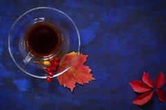 从无奶咖啡的秋天背景在红色的一个透明碗 库存照片