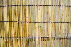 从日本,抽象背景的竹表面纹理 库存照片