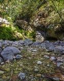 从更低的点去除的森林湖与小瀑布按日奉献太阳 库存图片