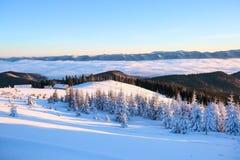 从有织地不很细随风飘飞的雪的草坪有看法对冬天风景,在雪的公平的树,老小屋,高山,雾 免版税库存照片