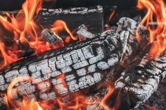 从木柴的热的煤炭在与火焰的一个营火 免版税库存图片