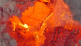 从木炭和木柴的发光的火焰 影视素材