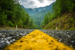 从柏油路的令人惊讶的自然视图 接近的场面 o 库存照片
