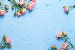 从桃红色玫瑰的框架在浅兰的织地不很细背景开花 库存照片