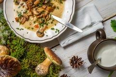 从森林和汤收集的蘑菇 免版税库存图片